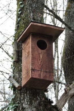 pose d 39 un nichoir pour chouette hulotte rencontres avec les oiseaux les animaux et papillons. Black Bedroom Furniture Sets. Home Design Ideas